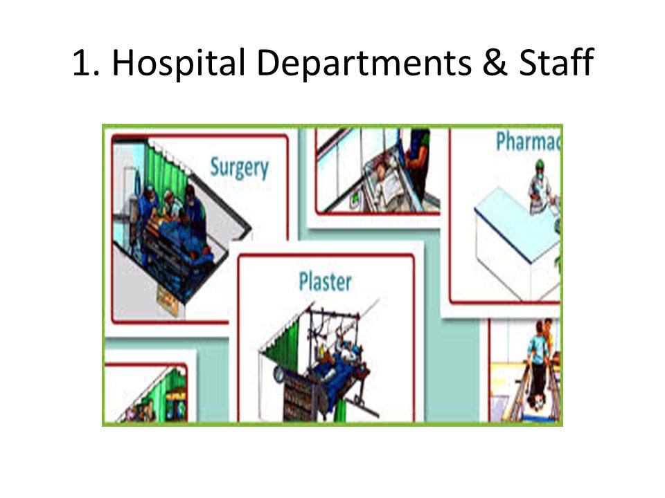 1. Hospital Departments & Staff
