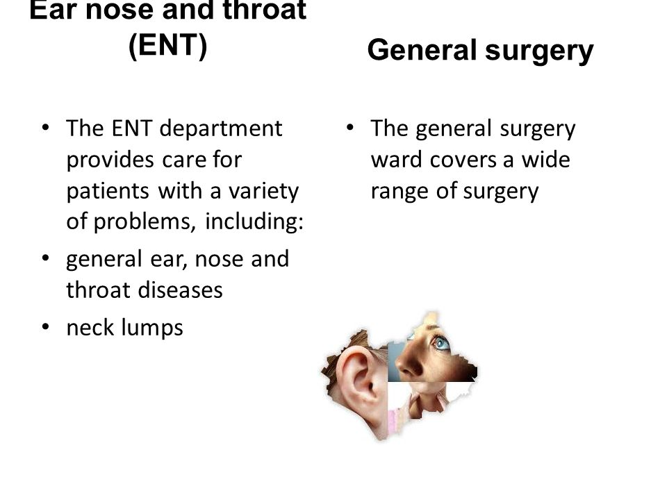Ear nose and throat (ENT)