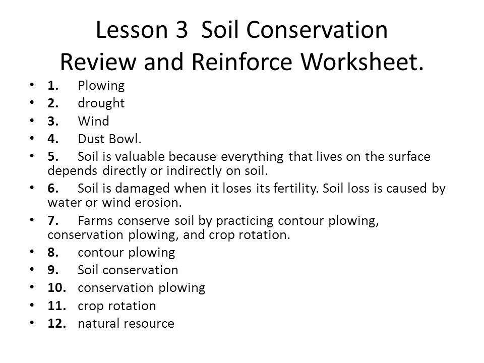 Soil conservation worksheet calleveryonedaveday for Soil in sentence