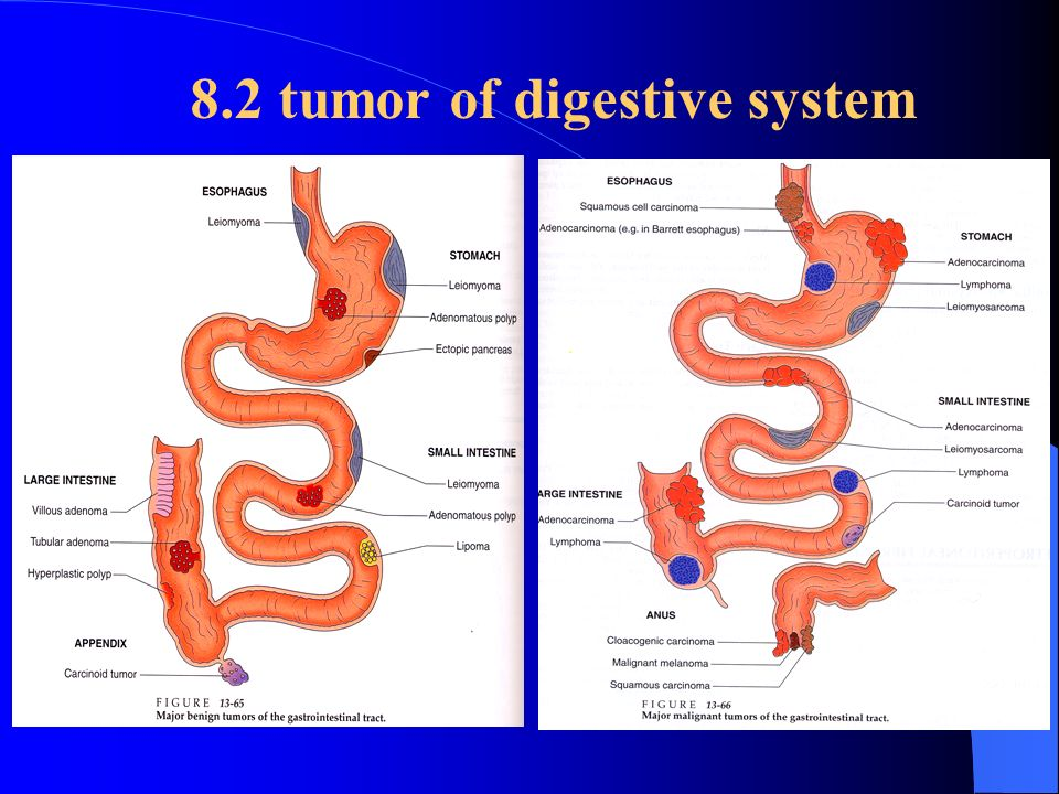 download essentials of diagnosis