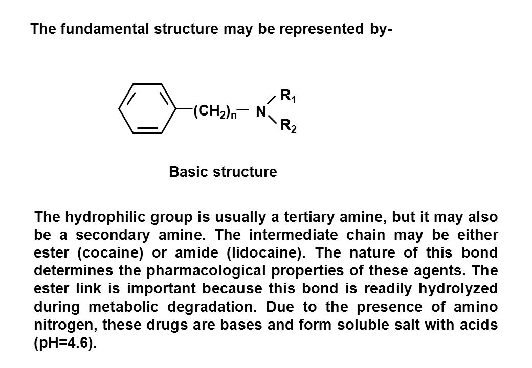 lidocaine structure activity relationship examples