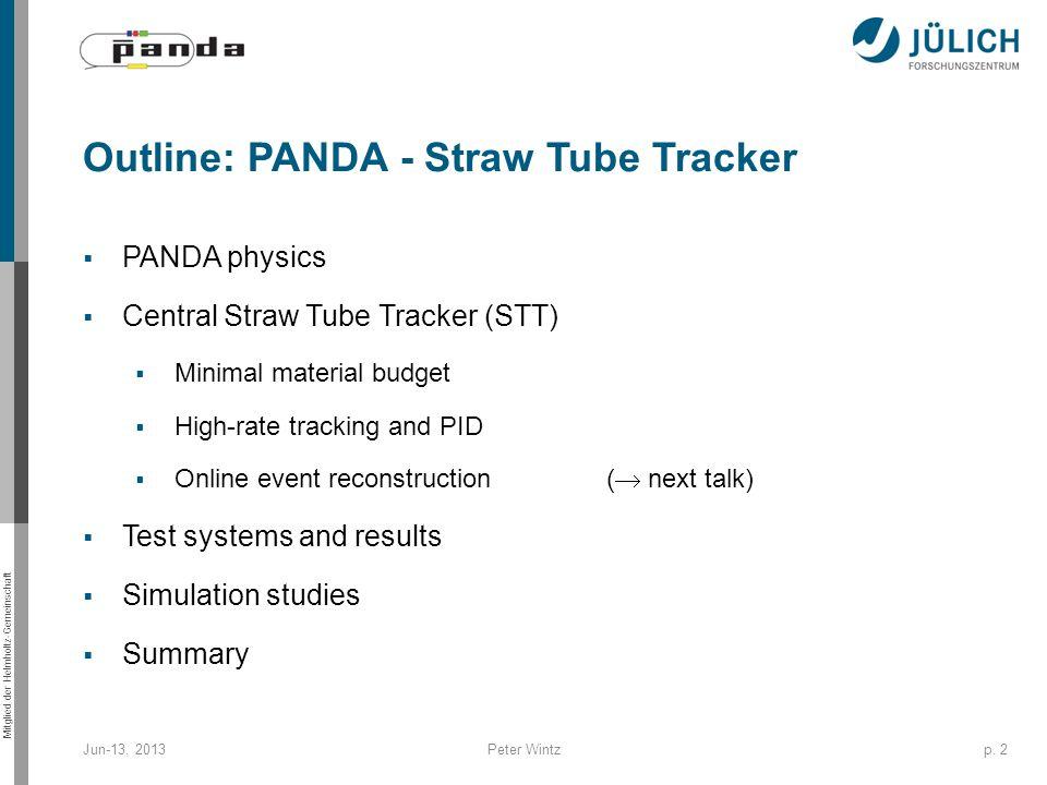 Outline: PANDA - Straw Tube Tracker
