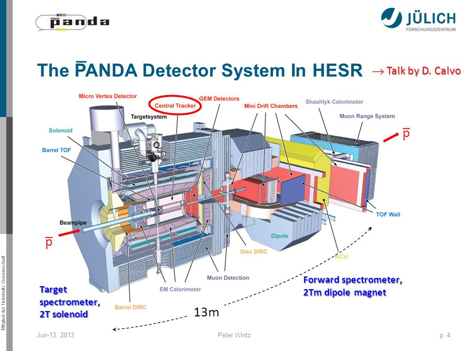 The PANDA Detector System In HESR