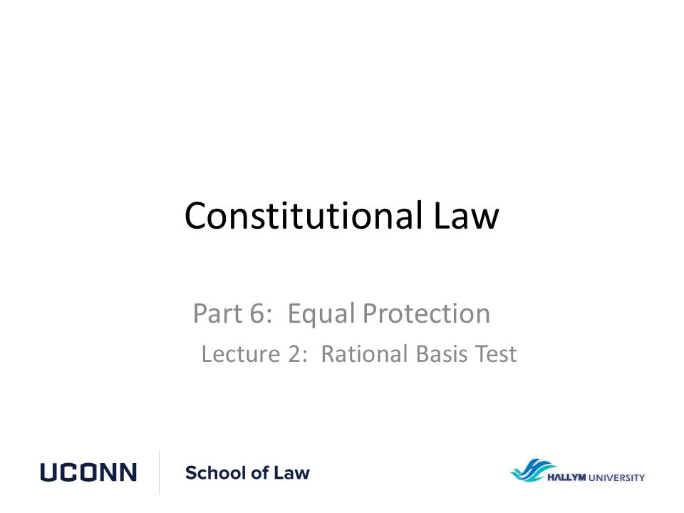 Constitutional Law Flowchart Equal Protection Constitutional Law