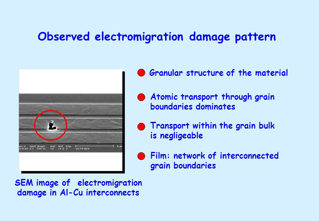 SEM image of electromigration damage in Al-Cu interconnects