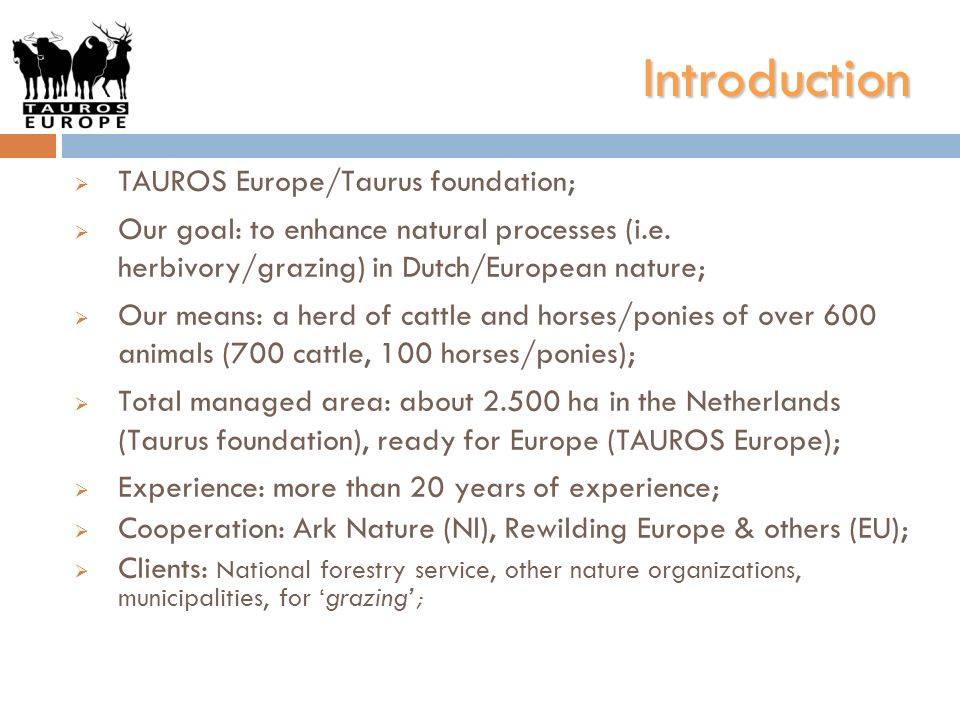 Introduction TAUROS Europe/Taurus foundation;