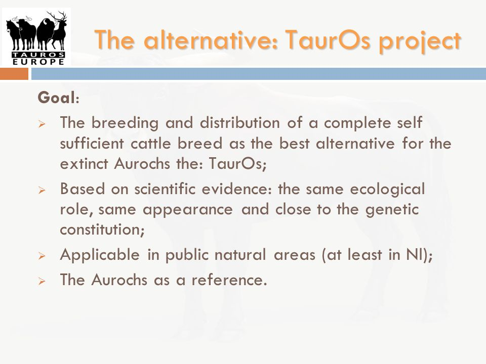 The alternative: TaurOs project