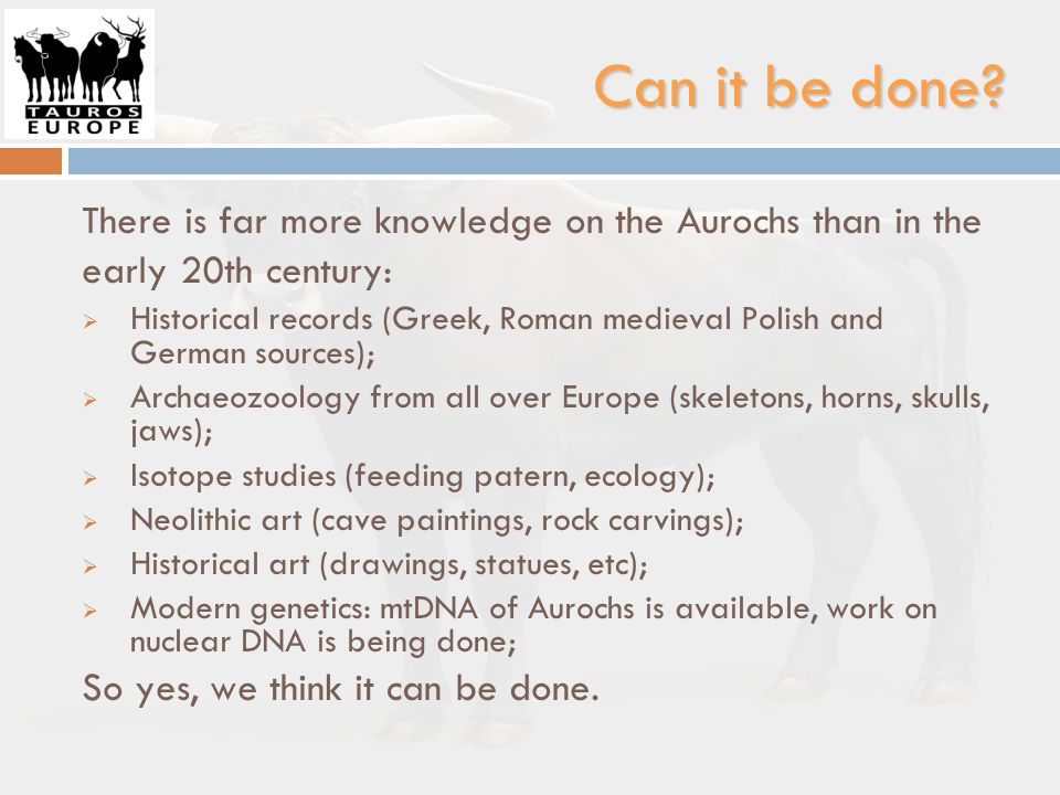 Can it be done There is far more knowledge on the Aurochs than in the early 20th century: