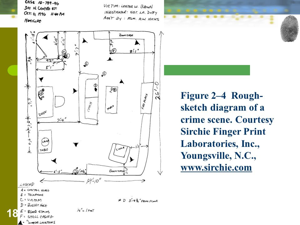 Murder Scene Diagram - free download wiring diagrams