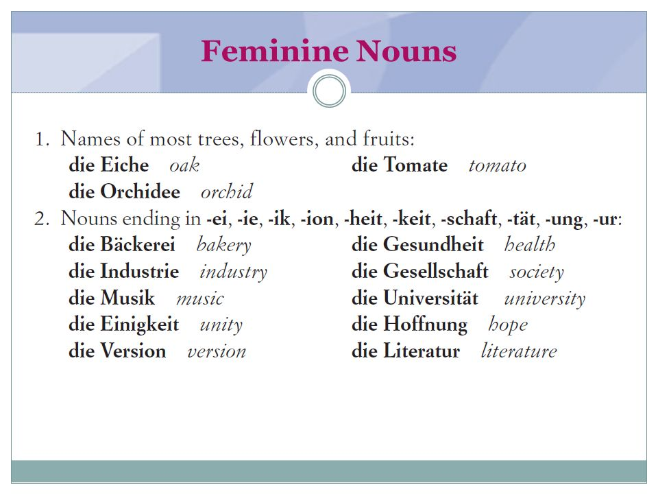 Feminine Nouns (textbook page 2)