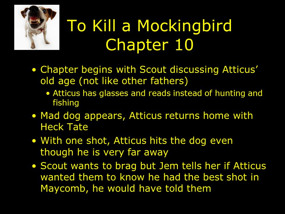 To Kill A Mockingbird Chapter 10