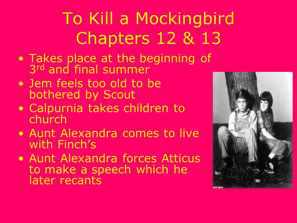 kill mocking bird literary devices Extracts from this document introduction analysis of to kill a mockingbird from the aspects of literary elements and devices and the relevance of the themes in todays society the beauty of writing a novel lies in the idea where the author has an ultimate freedom to depict his or her perspective and interpretation towards certain.