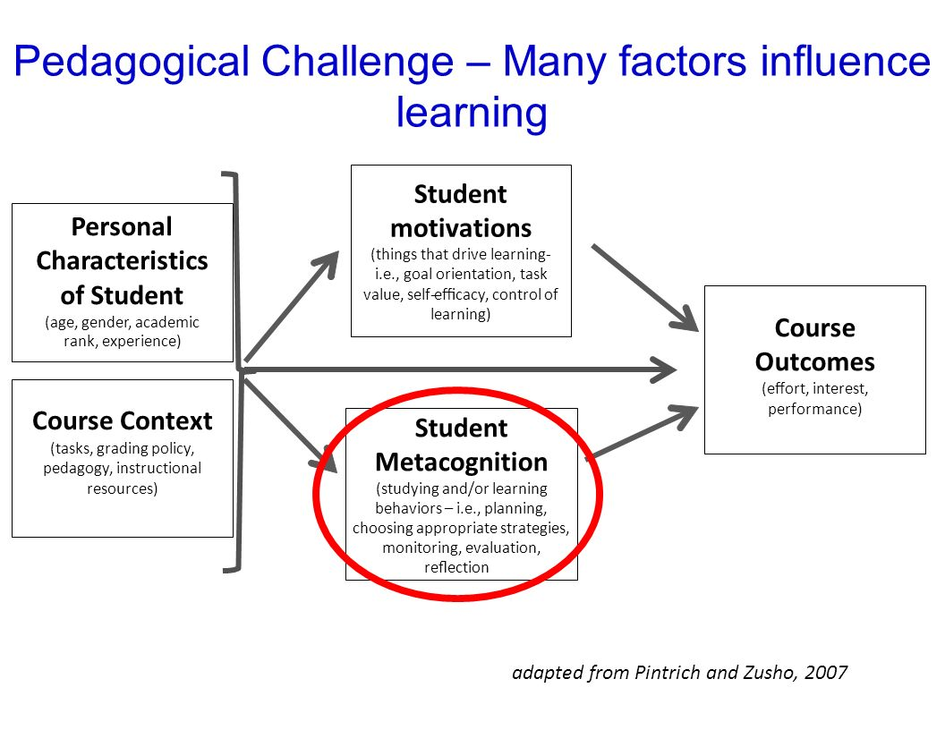 2 Factors That Influence Learning