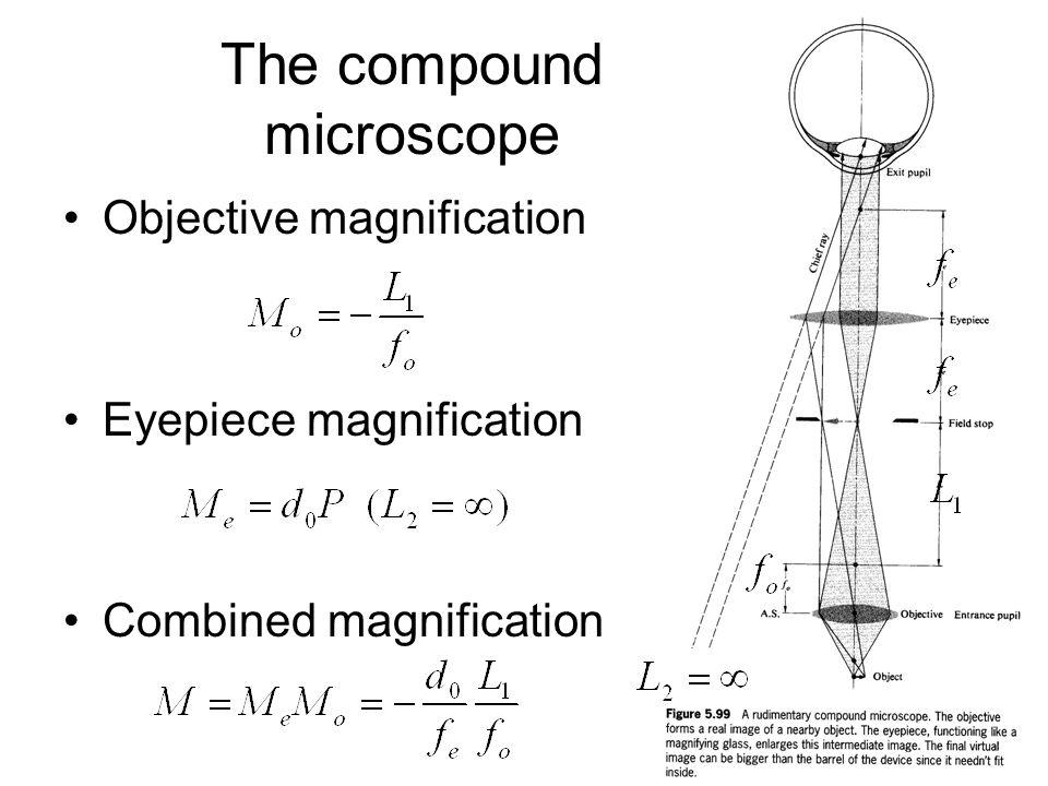100+ Compound Microscope Magnification – yasminroohi