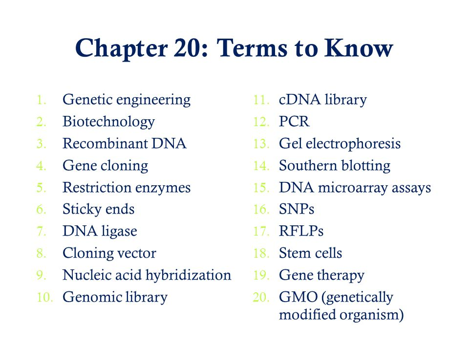 Chapter 20: Terms to Know Genetic engineering Biotechnology