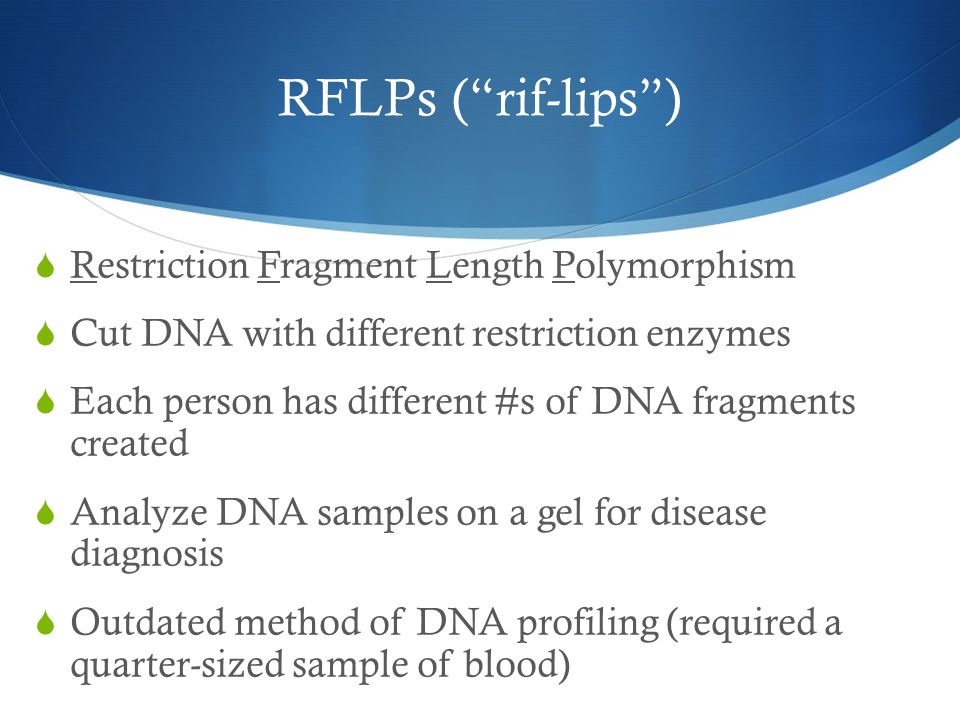 RFLPs ( rif-lips ) Restriction Fragment Length Polymorphism