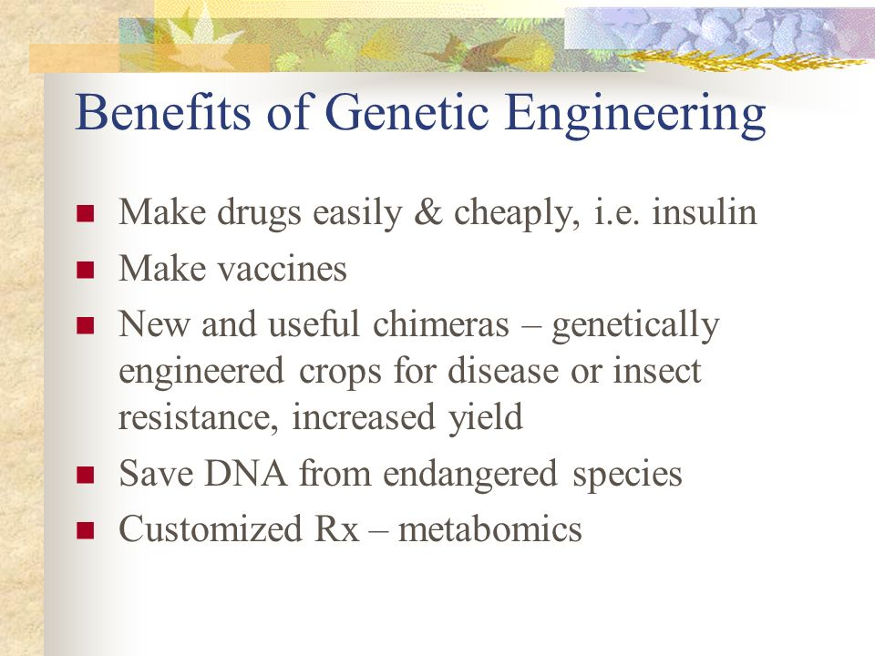 benefits and problems of genetic engineering On the issue of altering life here are the advantages and disadvantages of  genetic engineering:  it risks unknown consequences of viral genes for the body.