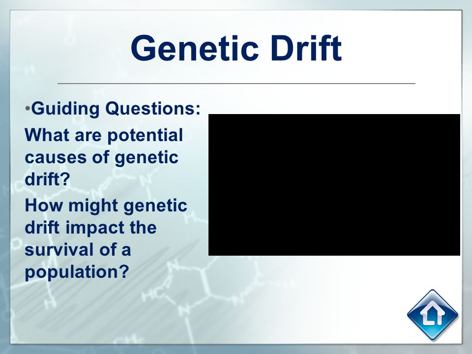 population genetics essay questions Observing various microevolution cases using population genetics: using a population gene pool simulator, popcycle abstract the study of microevolution was tested in this laboratory experiment through the examination, observation, and analysis of various population conditions, some under the hardy-weinberg theory of genetic equilibrium, which would advance the student scientists.