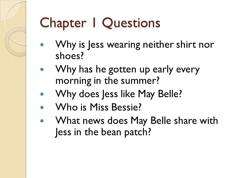 Chapter 1 Questions Why is Jess wearing neither shirt nor shoes