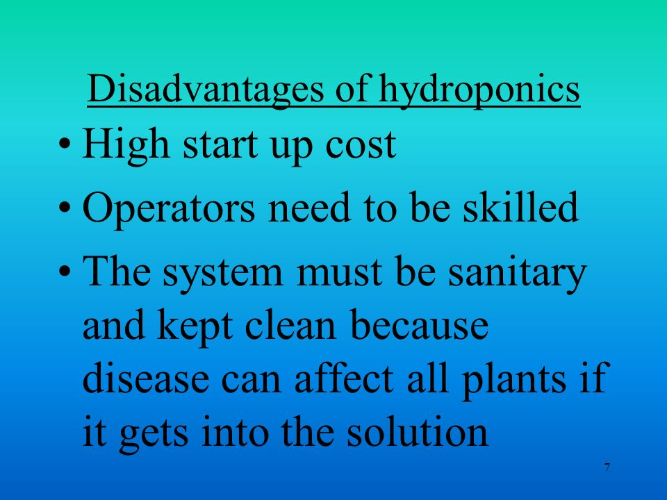 the advantages of hydroponics One of its main advantages of hydroponics is the possibility of using urban spaces which until now had not been considered adequate for growing food high efficiency in the use of irrigation water water is recycled and does not pollute the environment.