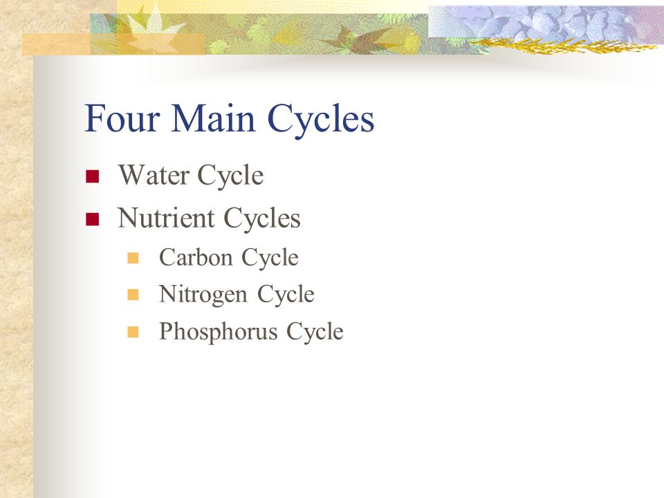 Four Main Cycles Water Cycle Nutrient Cycles Carbon Cycle