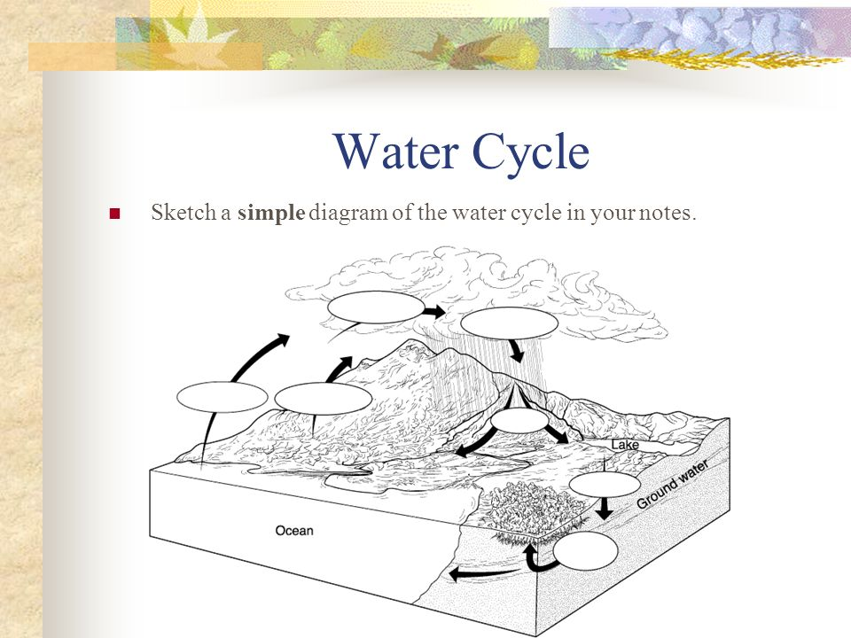 Water Cycle Sketch a simple diagram of the water cycle in your notes.