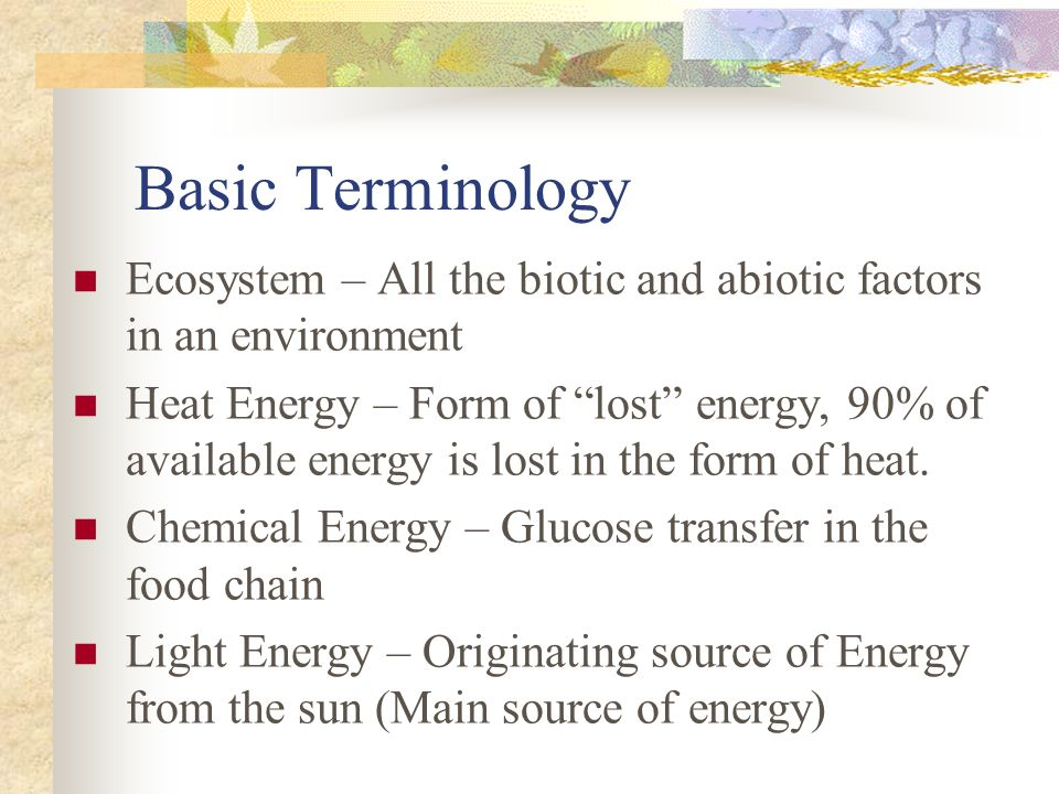 Basic Terminology Ecosystem – All the biotic and abiotic factors in an environment.