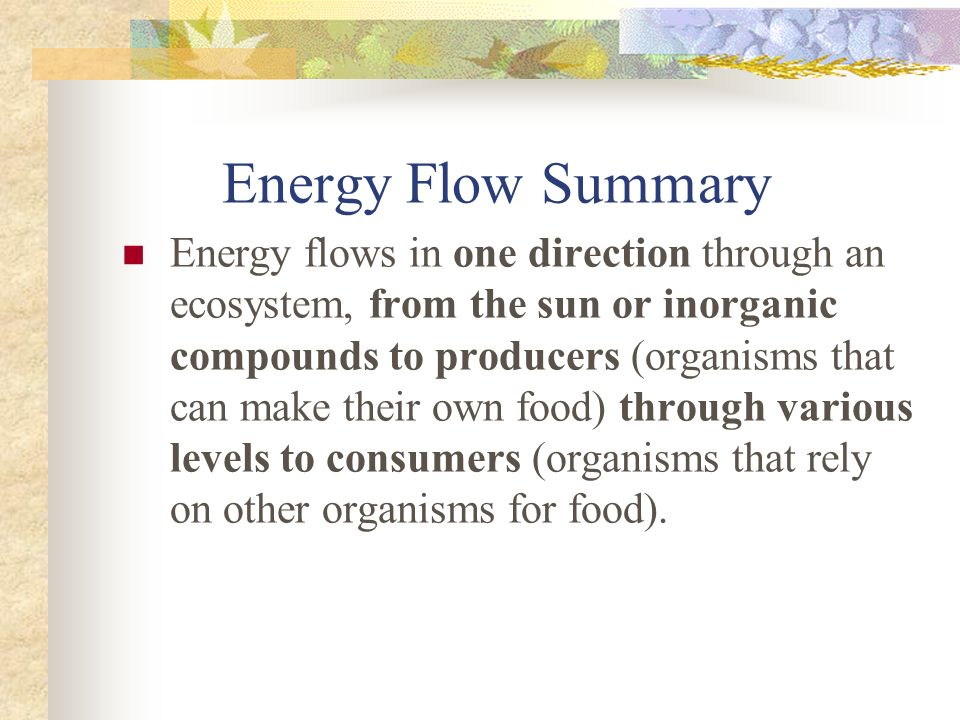 Energy Flow Summary