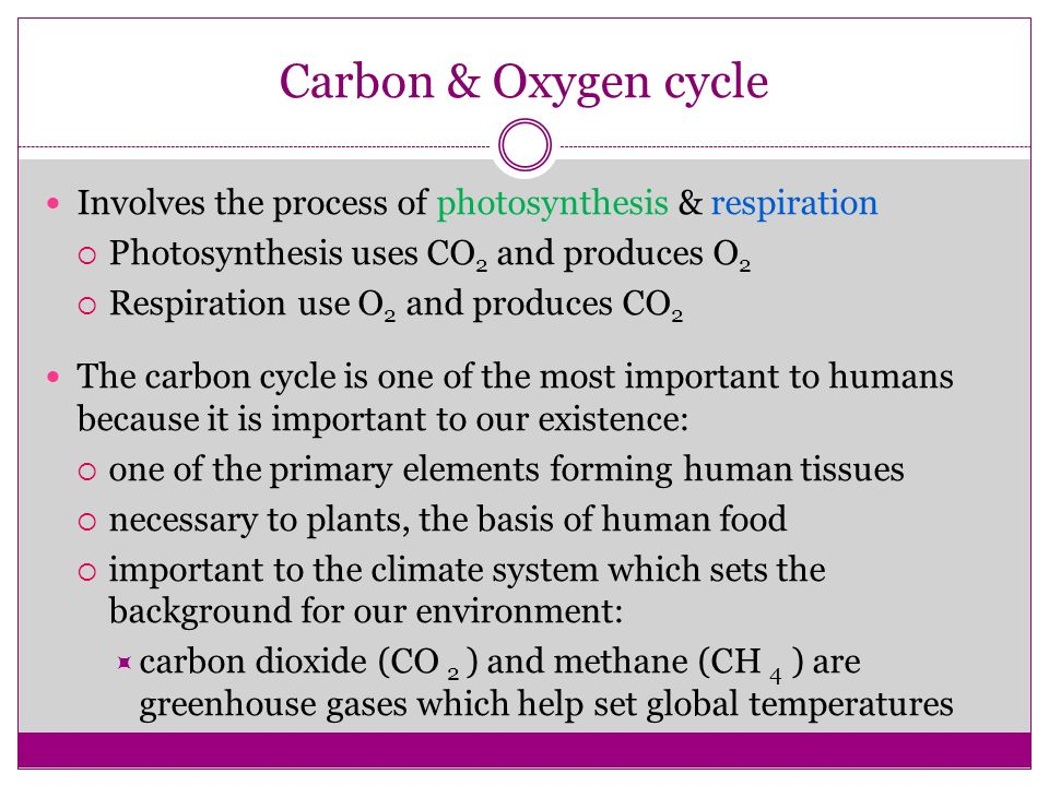 global oxygen and carbon cycles essay Essay on greenhouse gases and global warming: alter the natural carbon and other cycles (mainly nitrogen and oxygen.