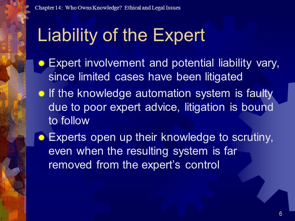 Liability of the Expert