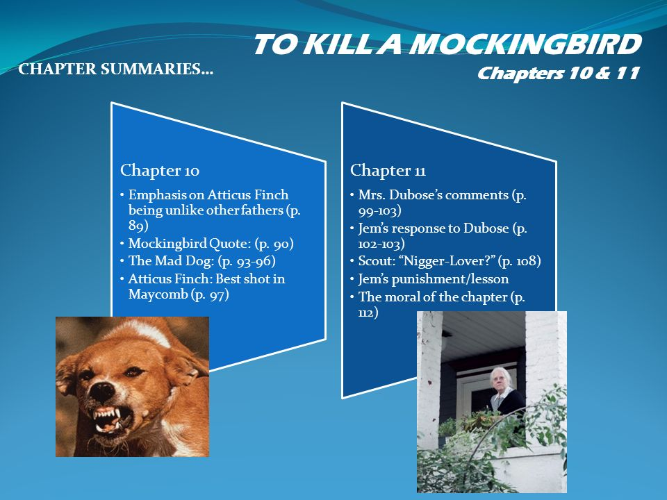 tkam chapter 10 summary