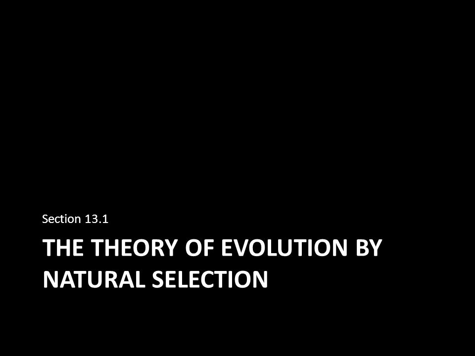 evolution by natural selection This evolution by natural selection presentation is suitable for 9th - 12th grade introduce the topic of evolution and natural selection with visuals, vocabulary, and historical perspective budding biologists can examine the evidence on their own by going through the presentation, or the.