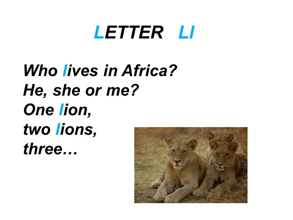 LETTER Ll Who lives in Africa He, she or me One lion, two lions,
