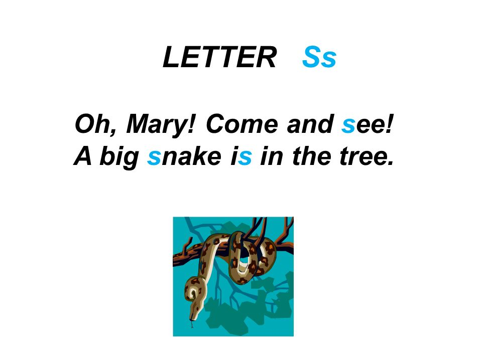 LETTER Ss Oh, Mary! Come and see! A big snake is in the tree.