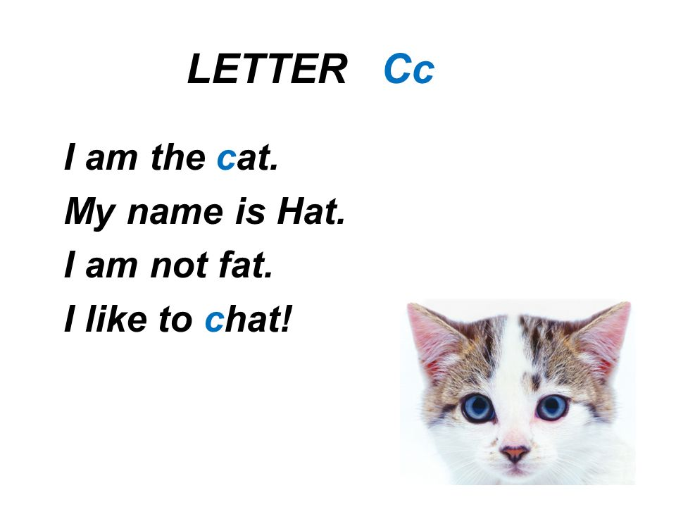 LETTER Cc I am the cat. My name is Hat. I am not fat. I like to chat!