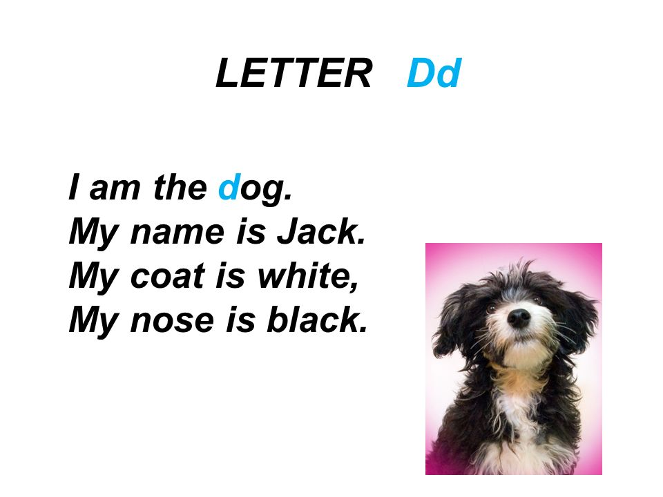 LETTER Dd I am the dog. My name is Jack. My coat is white,