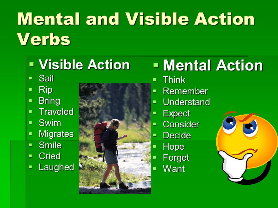 mental and visible action verbs - Action Berbs