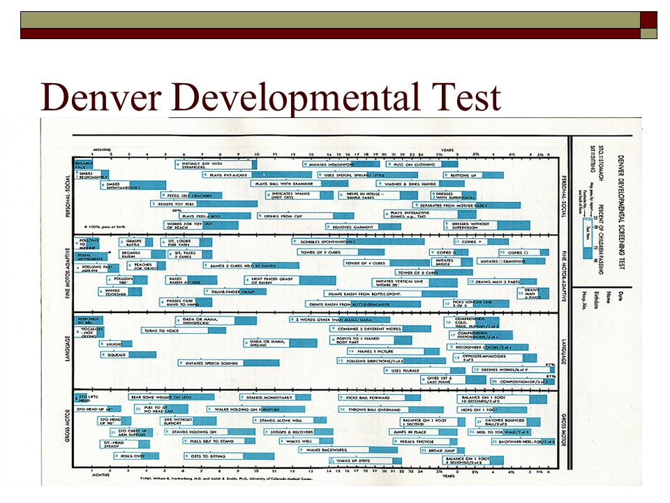 denver developmental scale