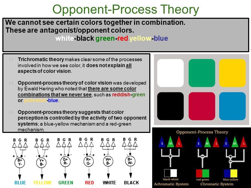 opponent process theory An opponent-process theory of motivation: i temporal dynamics of affect1 richard l solomon university of pennsylvania john d corbit brown university a new theory of motivation is described along with its applications to addiction and aversion the theory assumes that many hedonic,.