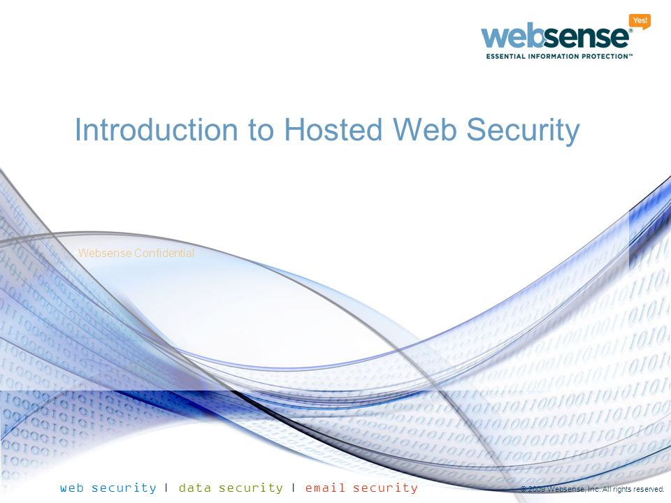 Introduction to Hosted Web Security