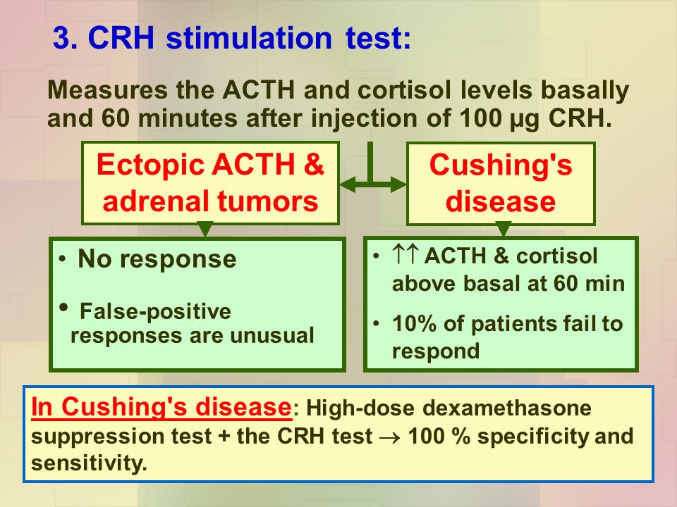 acth and cortisol relationship questions