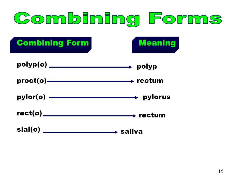 Medical Terminology Essentials – Chapter ppt download