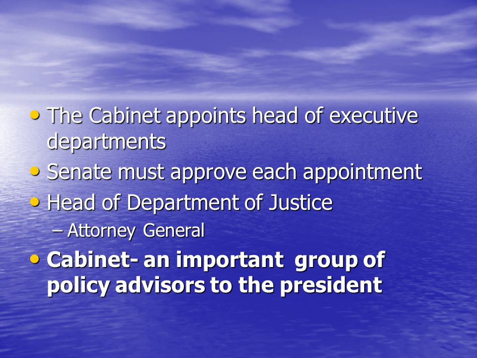 The Organization of the Executive Branch - ppt download
