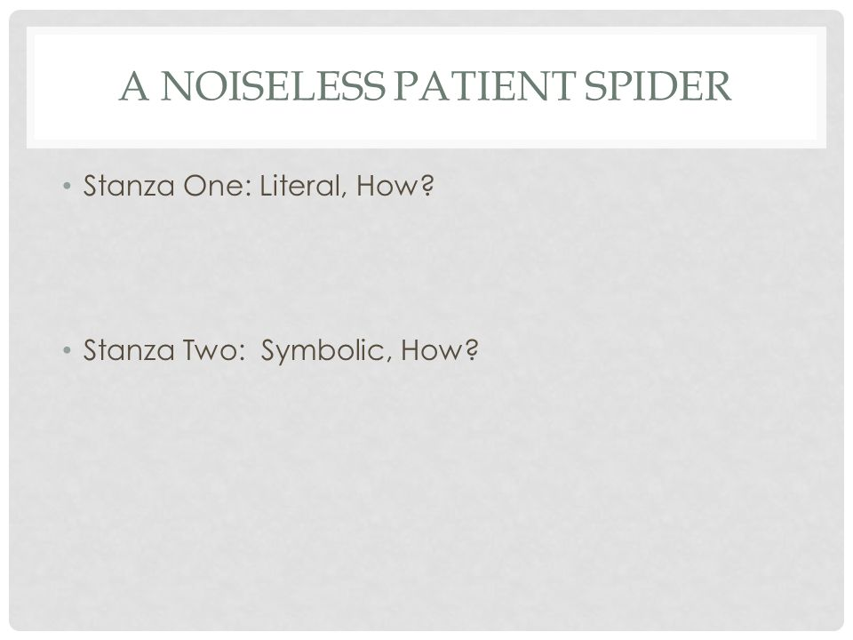 a noiseless patient spider poem Start studying a noiseless patient spider by walt whitman learn vocabulary, terms, and more with flashcards, games, and other study tools.