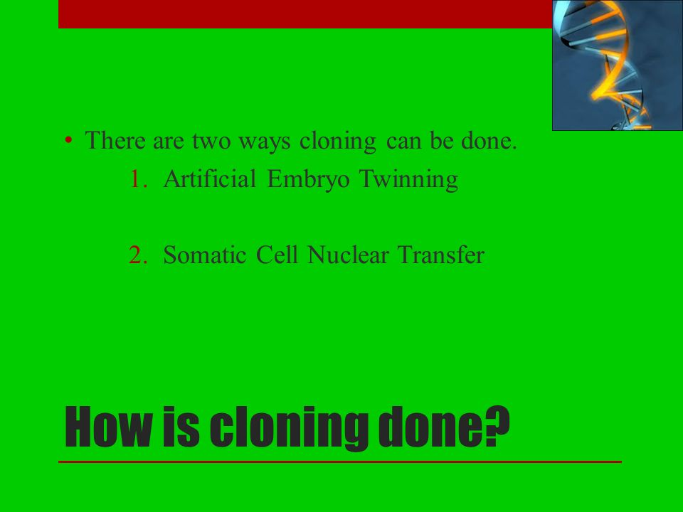 cloning the synthetic way of life In a second resolution on cloning of 15 january 1998, the european parliament, in requesting the prohibition of human cloning by way of experimentation for diagnosis or for any other purpose, even describes cloning as anti-ethical and morally repugnant (b.