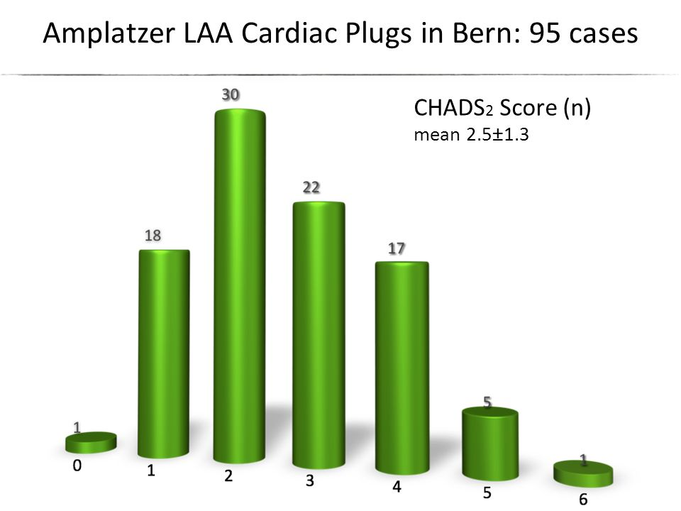 Amplatzer LAA Cardiac Plugs in Bern: 95 cases