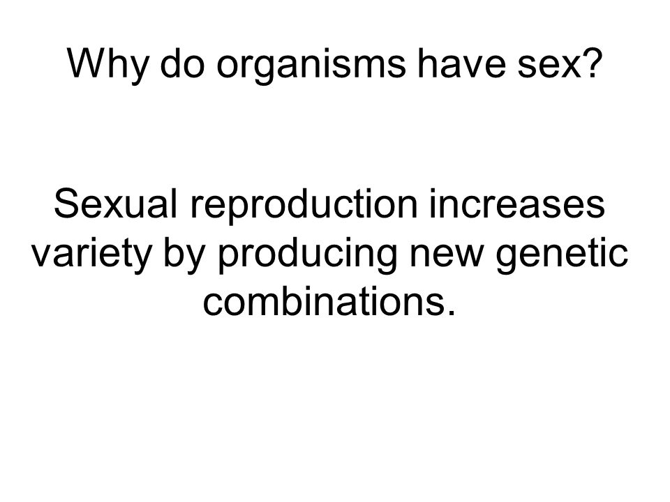 Meiosis and Sexual Reproduction - ppt download