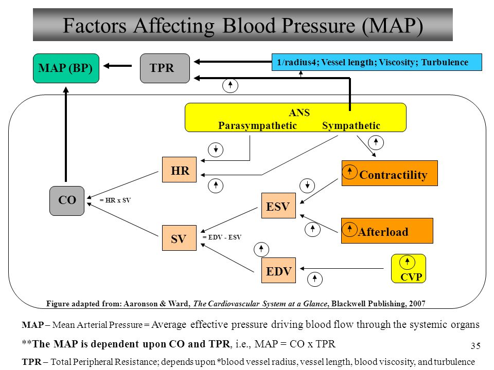 factors affecting hypertension
