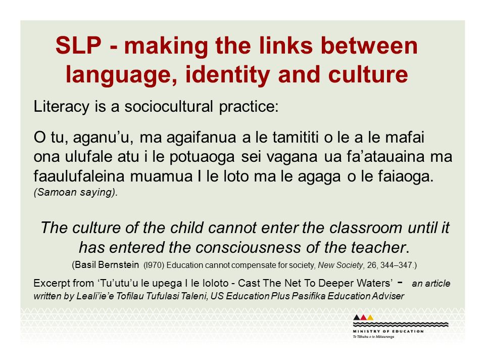 the links between language and culture The relationship between language and culture is an interplay between linguistic  choices and cultural filters if we accept that language is an.