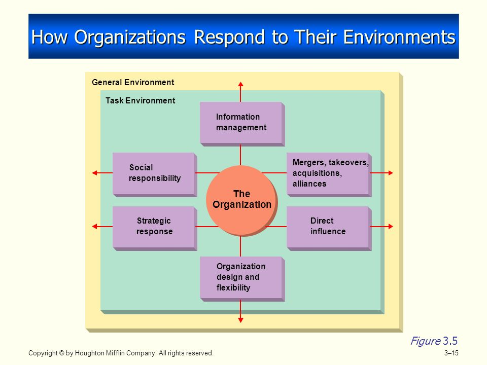The Environment of Organizations and Managers